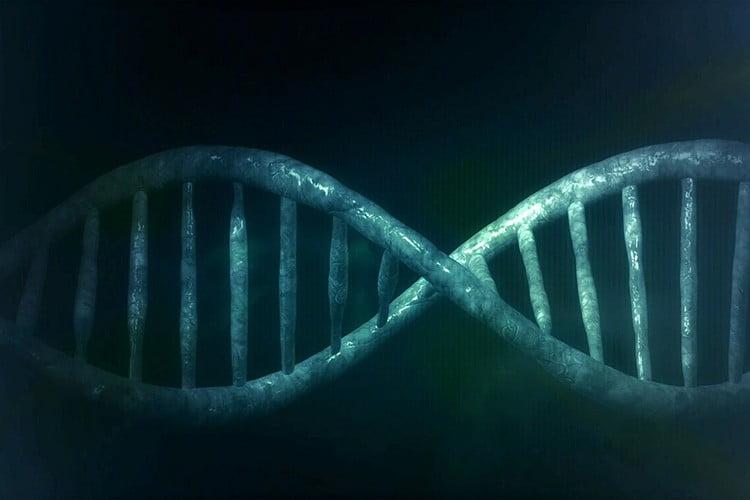 Le mille forme del DNA