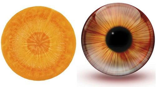 Come sarebbe il tuo corpo se fosse fatto di frutta e verdura?