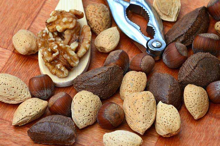 Un pugno di noci al giorno contro tumori e ictus