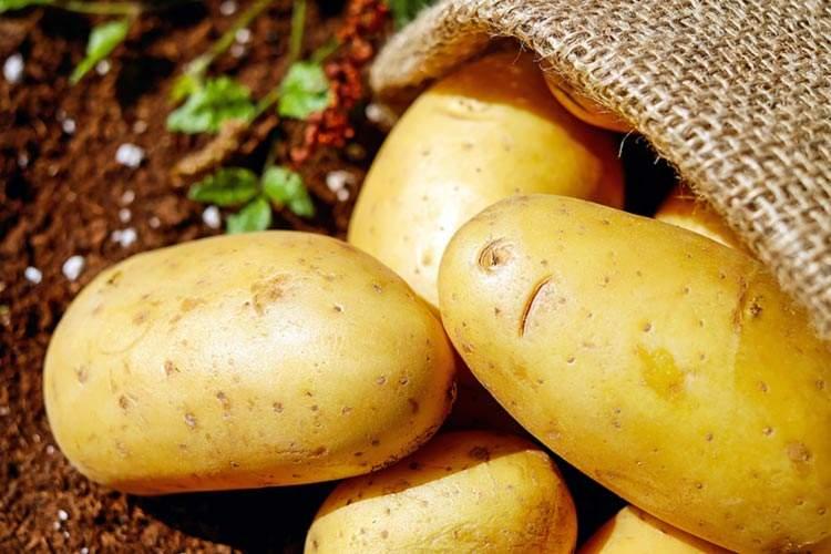 La patata: un alimento antinfiammatorio