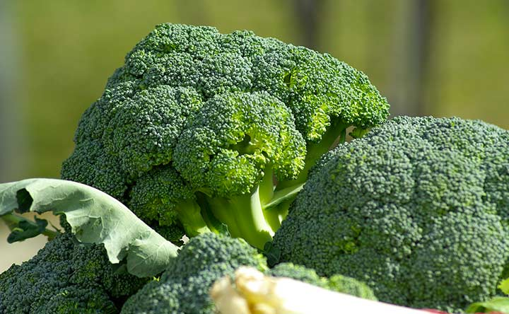 Proteggersi dalle malattie cardiovascolari con le verdure a foglia verde