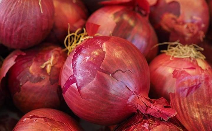 Cipolle rosse: doppio pugno killer contro le cellule tumorali