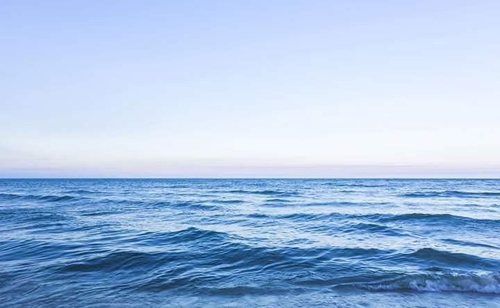 Come può reagire il nostro corpo quando ingeriamo involontariamente dell'acqua