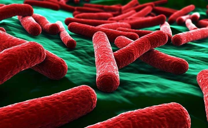 Bioelettricità, la nuova arma per combattere le infezioni